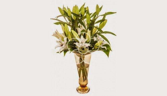 Ebony Vintage: Flori, fete și băieți