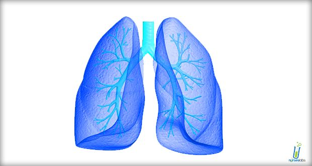 Respiratory Alkalosis Nursing Management and Interventions