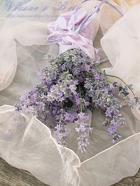 dried lavender, white delicate linen - beauty 16