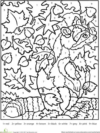 Worksheets: Color by Number Raccoon