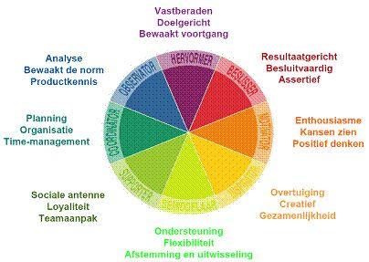 Door de vier kleuren te combineren worden acht persoonlijkheidscombinaties of 'hoofdtypen' geïdentificeerd. Dit zijn kwaliteiten die ieder type heeft voor het team en/of de organisatie.