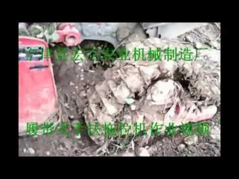 10-30HP Single-row Sweet Potato Digger for Sale Sweet Potato Harvester