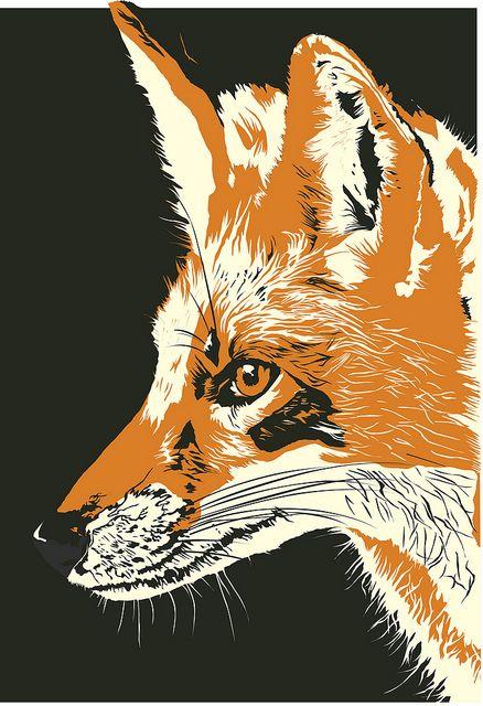 Fox print by Sara Cullen (http://www.catandfoxadventures.com/)