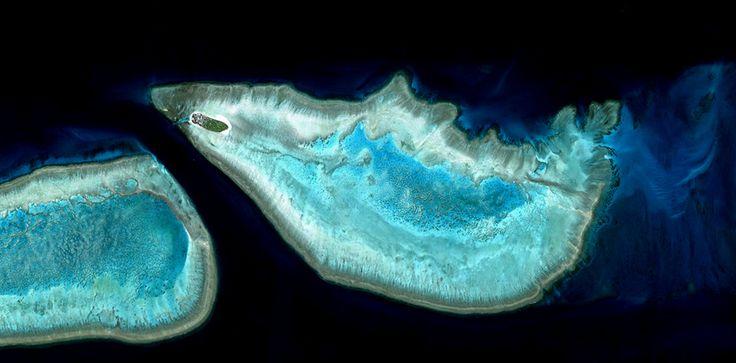 Johnsen Lab - Heron Island