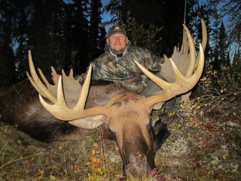 Moose Hunting Outfitters, Tips, Videos and Information.