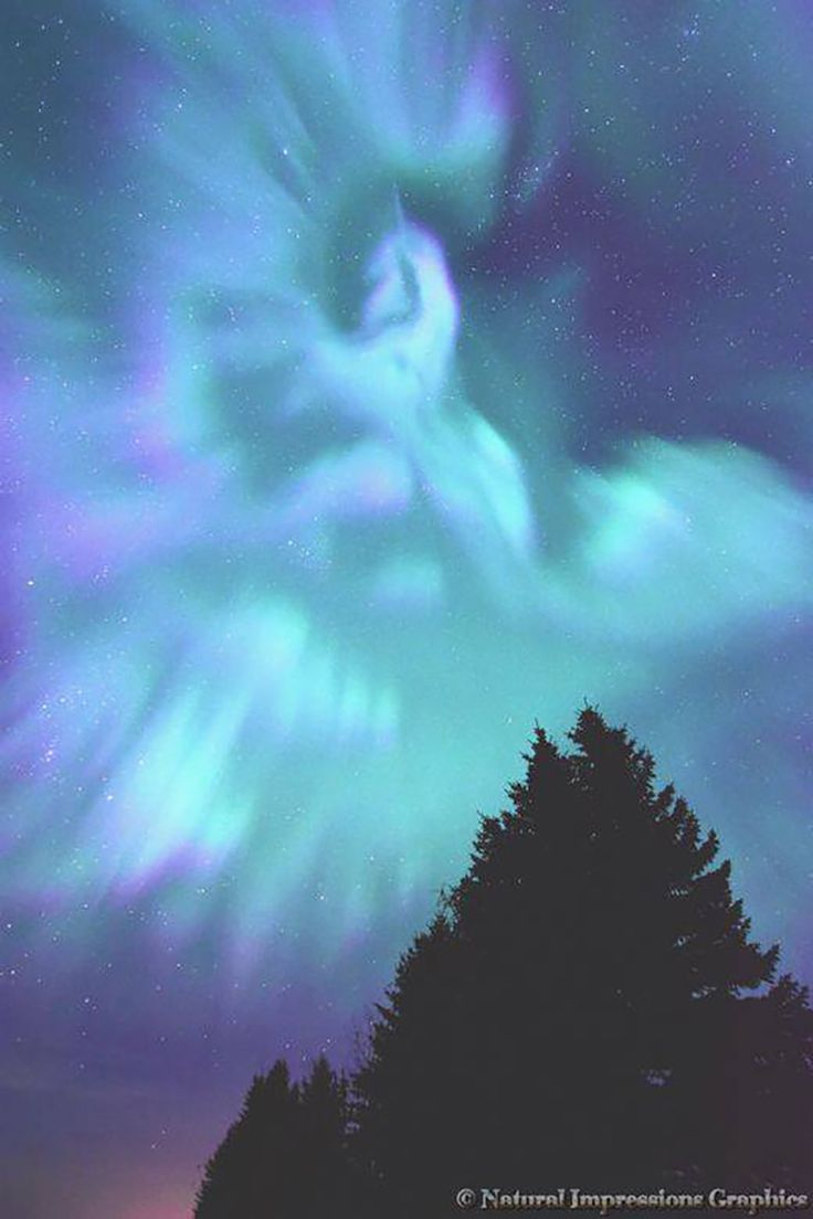 """""""Aurora Unicorn"""" Sometimes you get images that appear to be something more. We had an amazing Aurora display on October 17, 2015, east of Edmonton, Alberta, Canada. When looking through the images my daughter picked out this one image and was amazed that she could see a unicorn! No photoshop needed to alter the image, it does resemble one to me, what do you think?. Love the amazing beauty of the Aurora Borealis. By Haeli F Carter."""