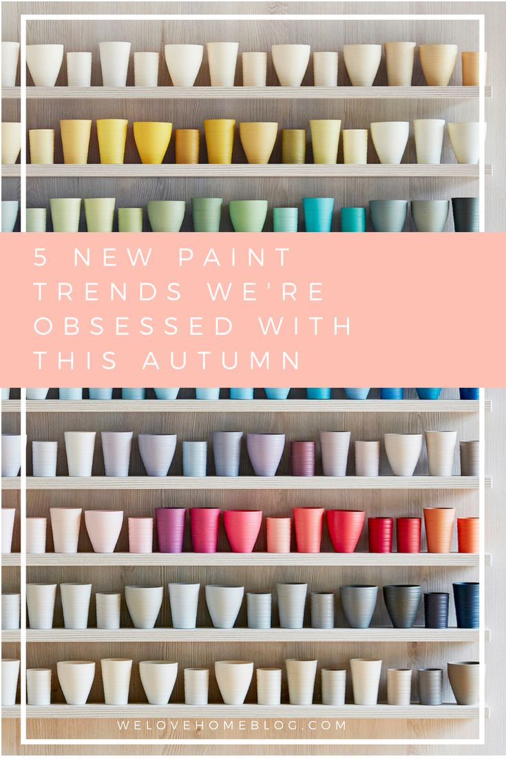 New Paint trends Weure Obsessed With This Autumn BRIGHTON
