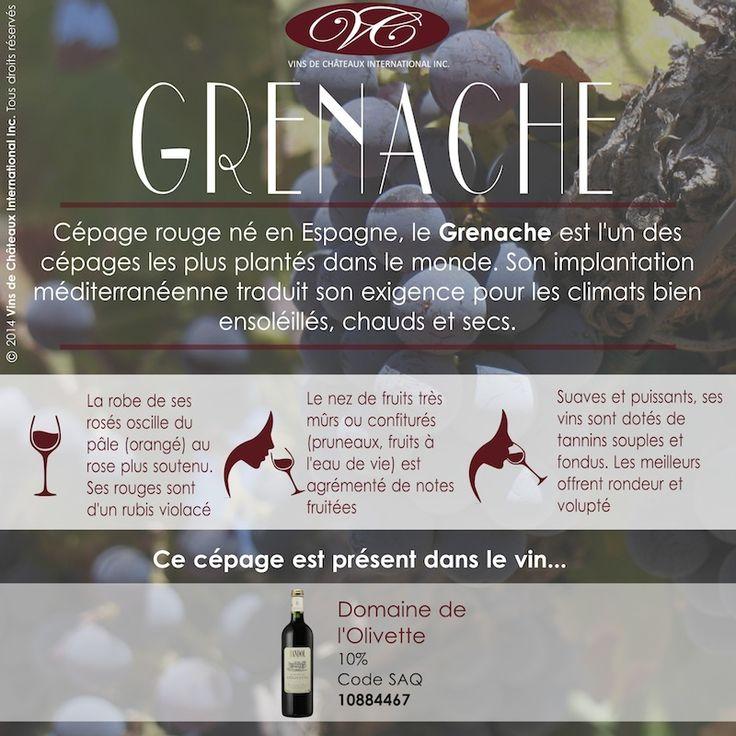 Retrouvez le cépage Grenache dans le Domaine de l'Olivette, vin rouge de Bandol (Côtes de Provence), présent dans nombreuses de vos SAQ (code 10884567) www.saq.com/...