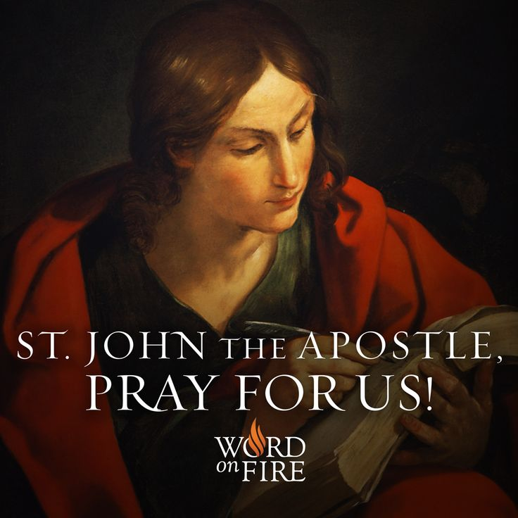 St. John the Apostle, pray for us!