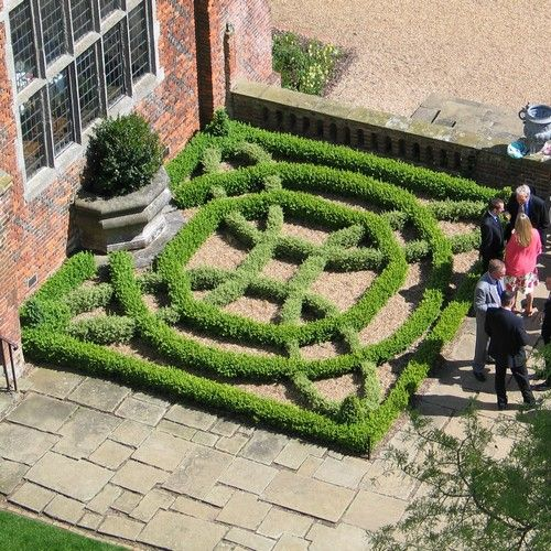 124 best images about knot gardens and topiaries on pinterest for Tudor knot garden designs
