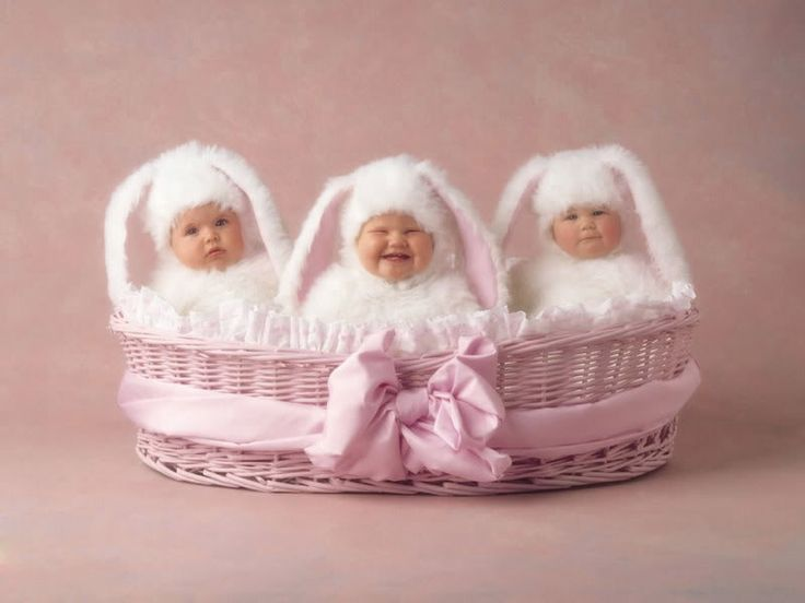 Who doesn't like Ann Geddes and her Baby pics.