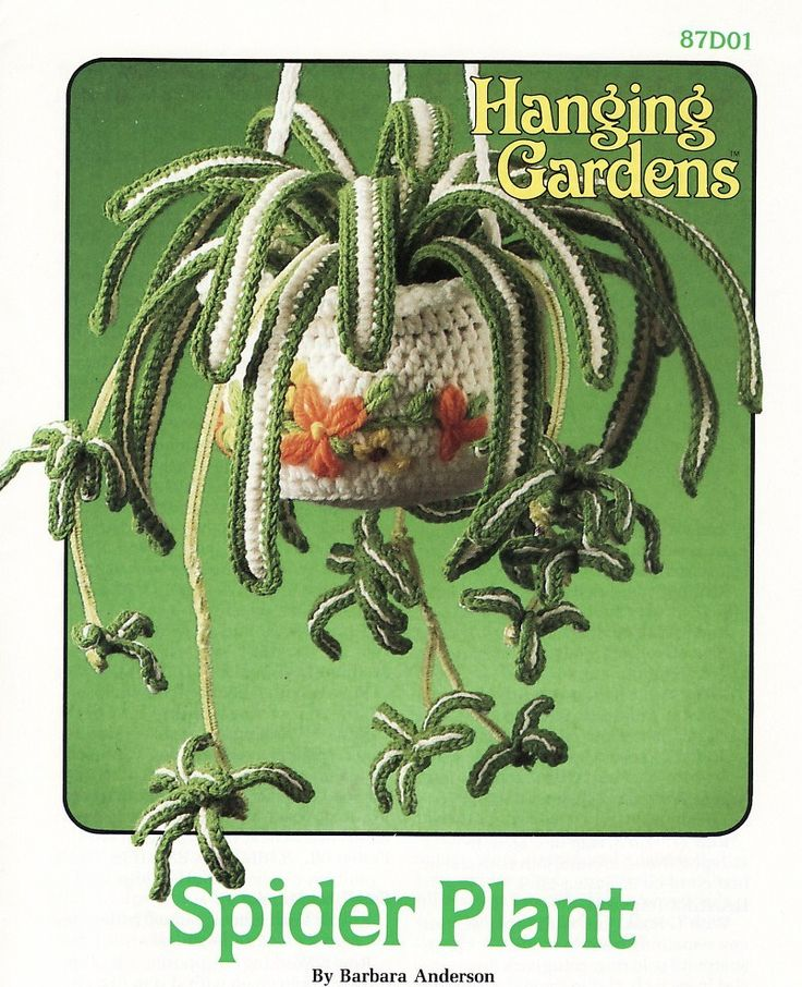PHOTO ONLY ~ Spider Plant Crochet Pattern Plant Pot Hanging Gardens Series Annies Attic