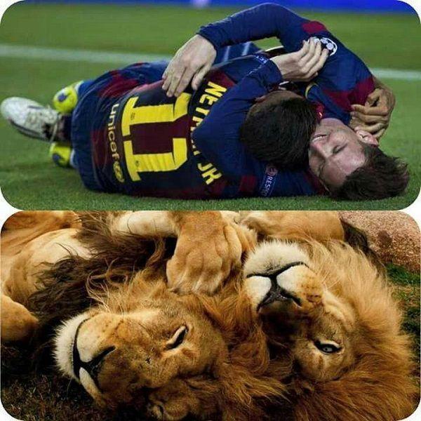 Dwie wielkie gwiazdy FC Barcelony obściskują się jak dwa lwy • Neymar i Lionel Messi cieszą się z gola • Zobacz wesoły obrazek >> #barca #fcbarcelona #barcelona #football #soccer #sports #pilkanozna #funny
