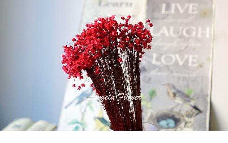 Флористики аксессуары Мини Бразилия Маленькая звезда цветок Естественной сушки…