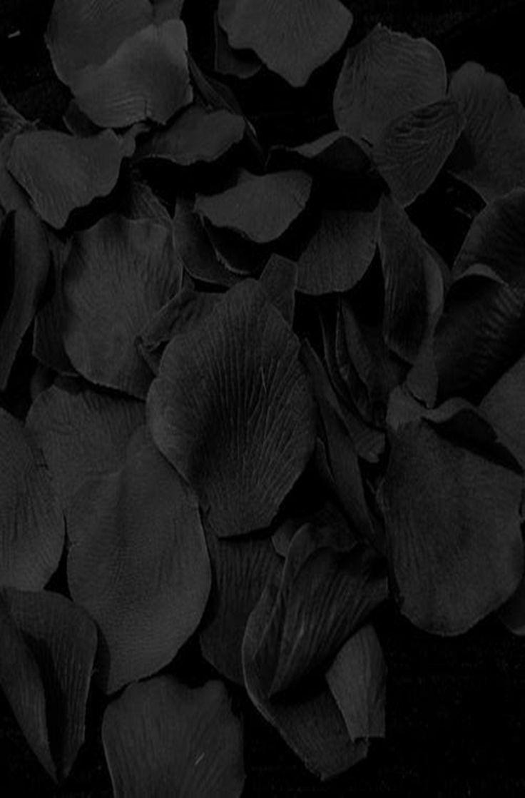 #black leaves