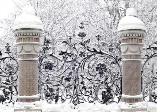 ornate beauty