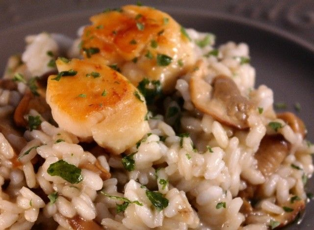 Risotto with porcini mushrooms and scallops