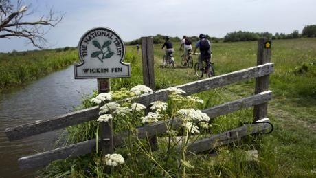 Wicken Fen National Nature Reserve
