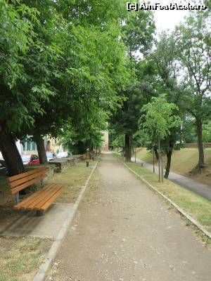 P06 [JUN-2015] Parcul Cetății...  -- foto by <b>tata123</b>…