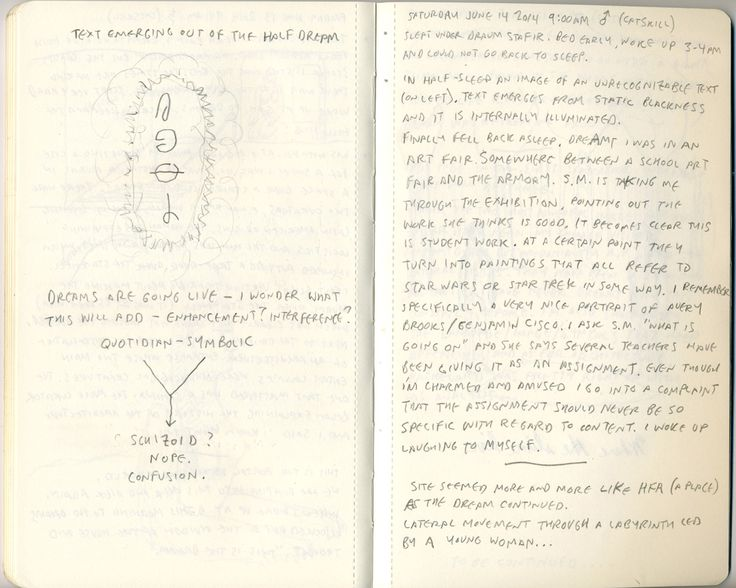 June 13 - Jesse Bransford's dream journal