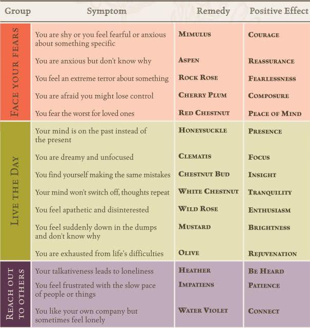bach flower essences chart | Bach Flower Remedies and Depression - Clinical Depression: Symptoms ...