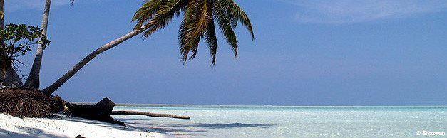 Where and How to Compare Flight Tickets to Barbados Before the Reservation, Angel Marth