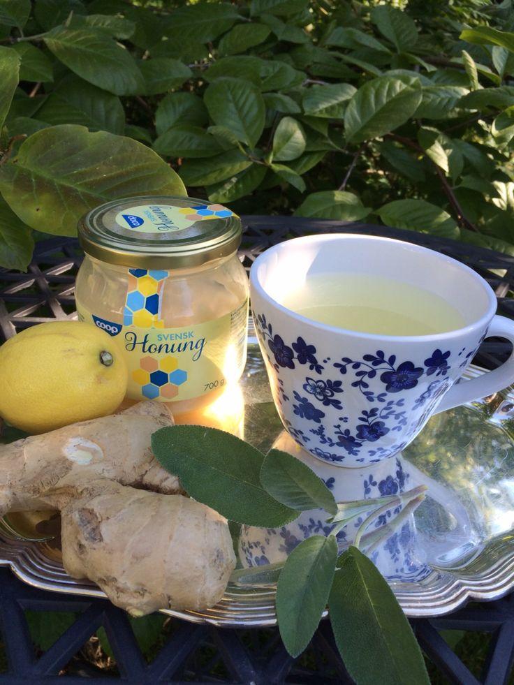 Daglig hälsokur, ingefärs-och citronte med lite honung