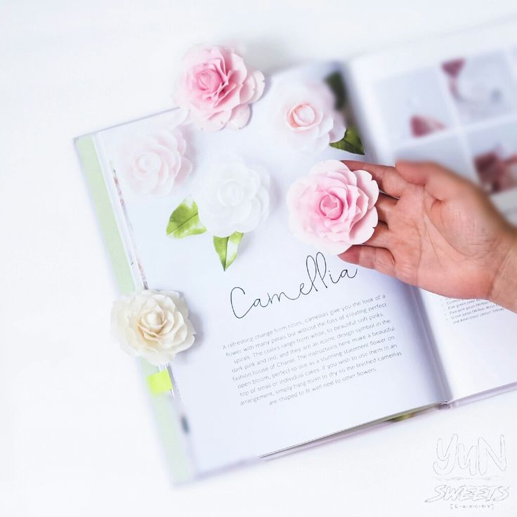 Sugar Camellia made easy with the modern sugarflower book :)
