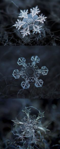 Macro images of snowflakes - DIY Technique. Takes my breath away!                                                                                                                                                                                 More