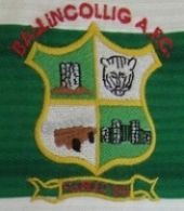 Ballincollig AFC  Ireland, match worn jersey. Amateur club from the City of Cork, founded in 1974, it has sides from 5 years old to veterans, and both male and female teams