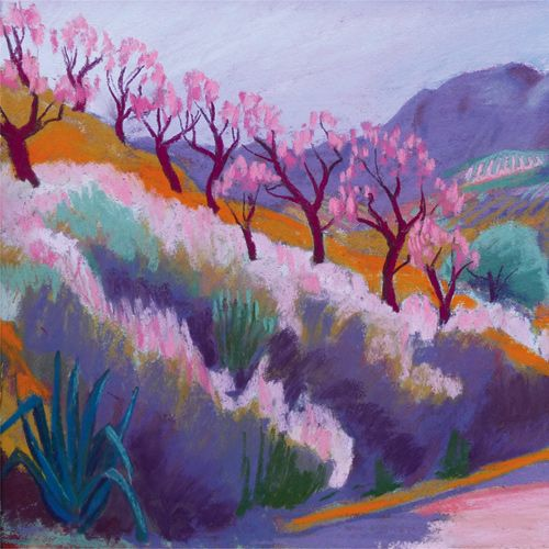 Sue Campion - Blossom on Hillside