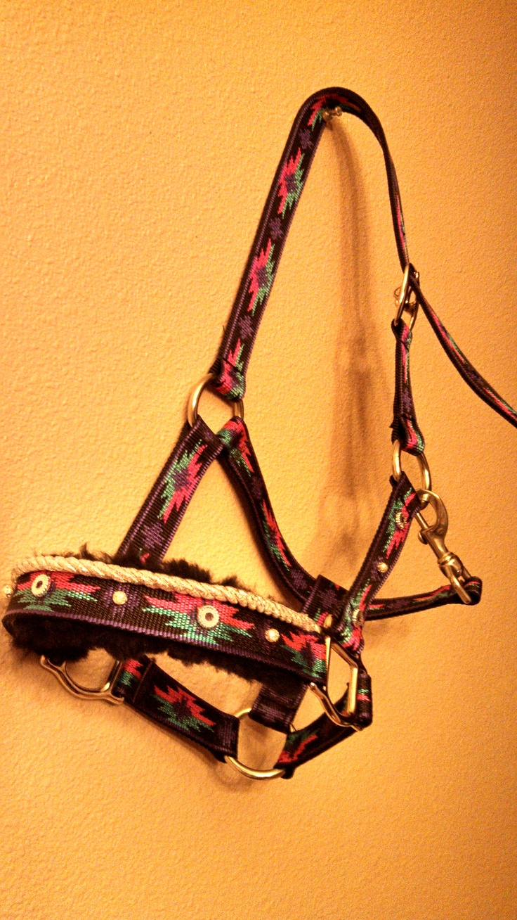 Halter with silver beading and sheepskin batting under nose band