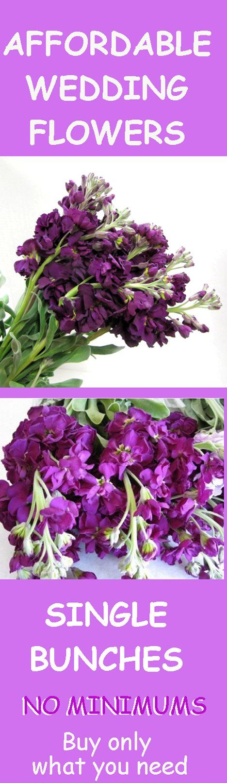 How To Make Wedding Bouquets And Corsages : Best images about stock flower wedding bouquets on