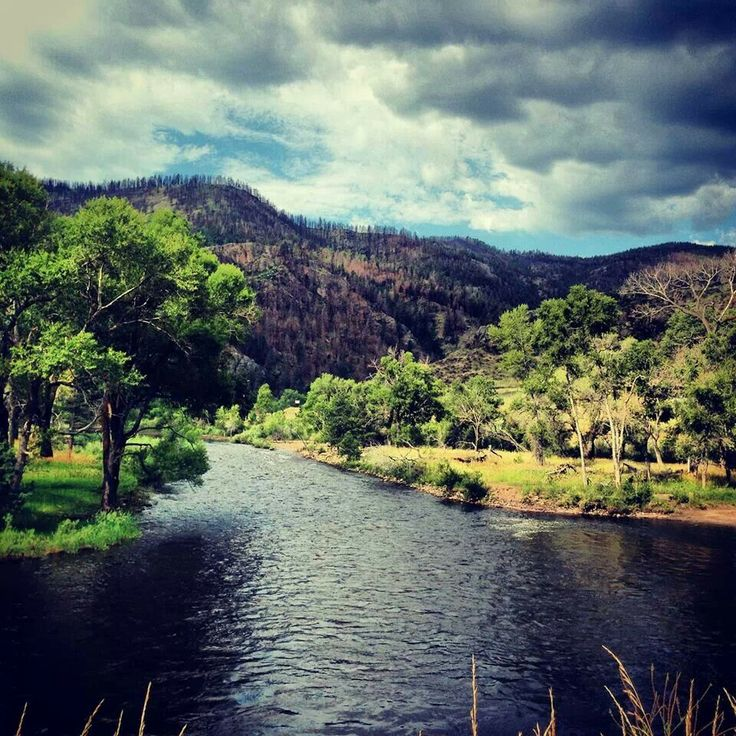Fort Collins Colorado: 86 Best Images About Poudre River In Northern Colorado On