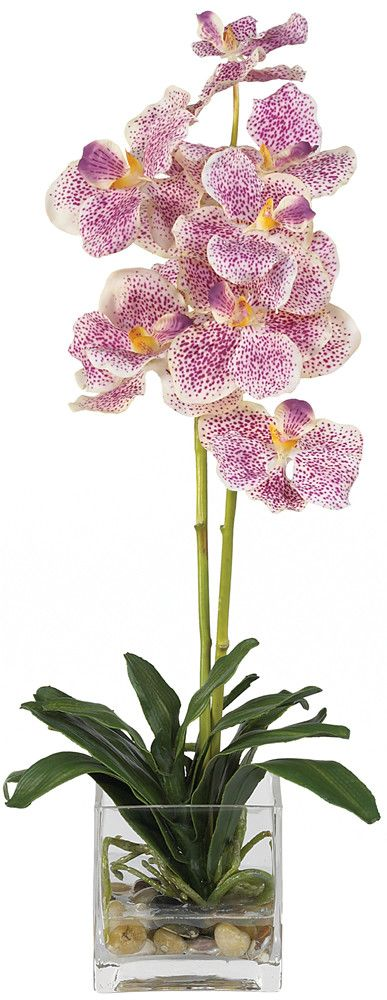 Features:  -Two slender stems filled with brightly speckled blossoms.  -Anchored by river rocks and lush foliage.  -Artificial water set in glass vase.  -Purple color.  Product Type: -Flowers.  Color:                                                                                                                                                                                 More