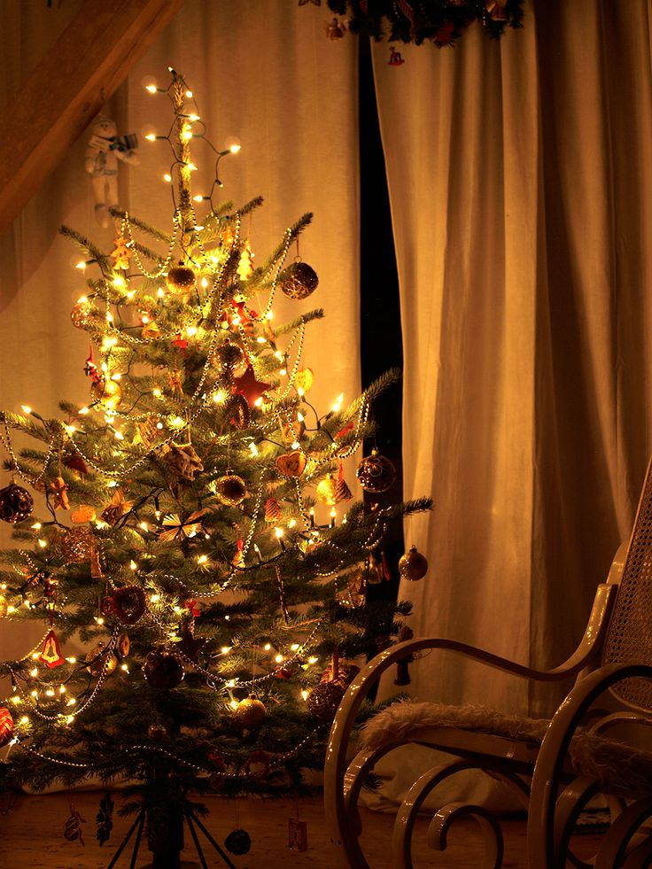 Boże Narodzenie w Siedlisku na Wygonie