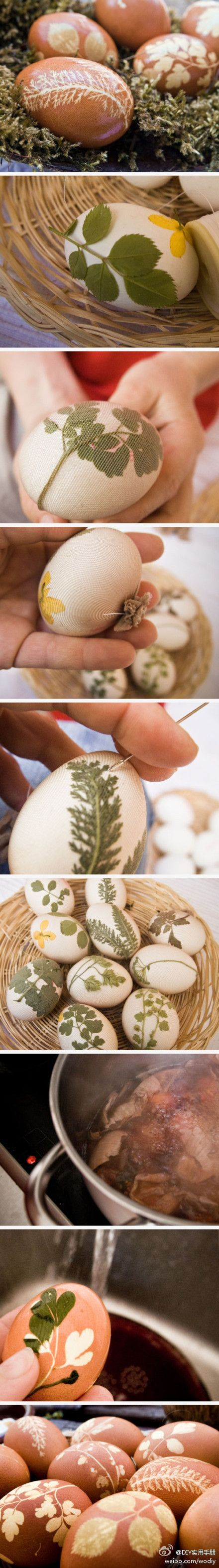 Dying eggs with onion skins and ferns. Picture tutorial.