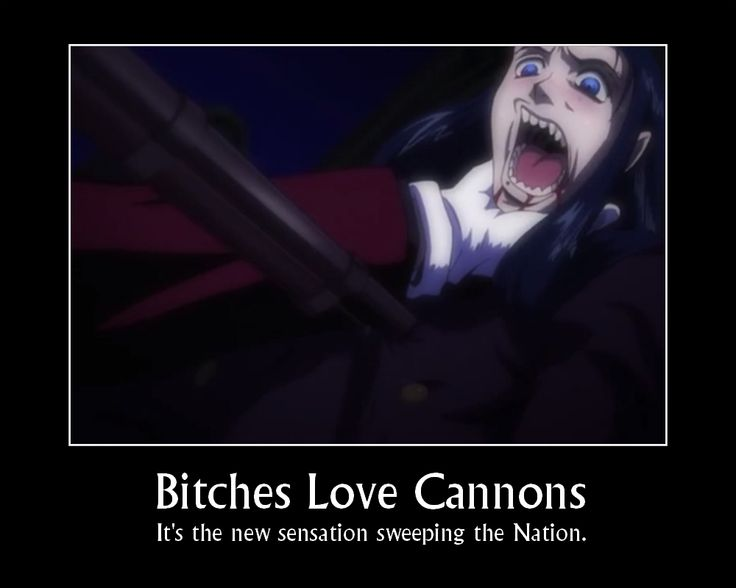 Hellsing Ultimate Abridged Quotes Bitches Love Cannons
