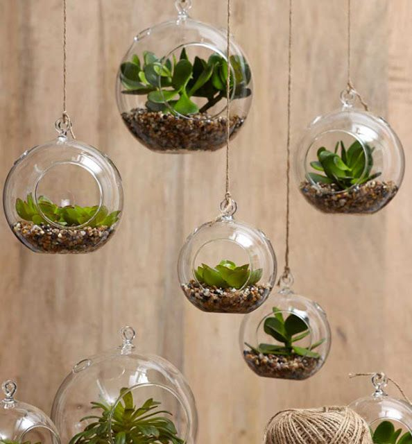 PLANTAS COLGANTES PARA INTERIORES by artesydisenos.blogspot.com