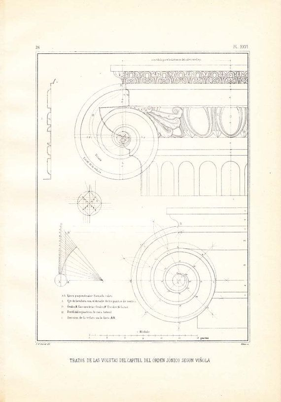This is a drawing of the lines of the scrolls (or volutes) of the capital in the Ionic Order by Giacomo Vignola. This vintage architectural print