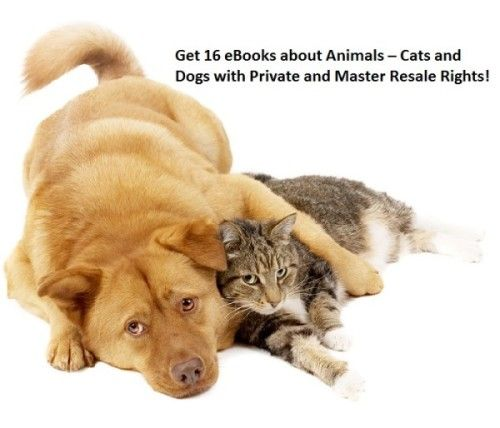 Get 16 #eBooks about #Animals – #Cats and #Dogs with #Private and #MasterResaleRights for only $5. Check out the offer here for more details: http://digesale.com/jobs/animals-pets/get-16-ebooks-about-animals-cats-and-dogs-with-private-and-master-resale-rights/