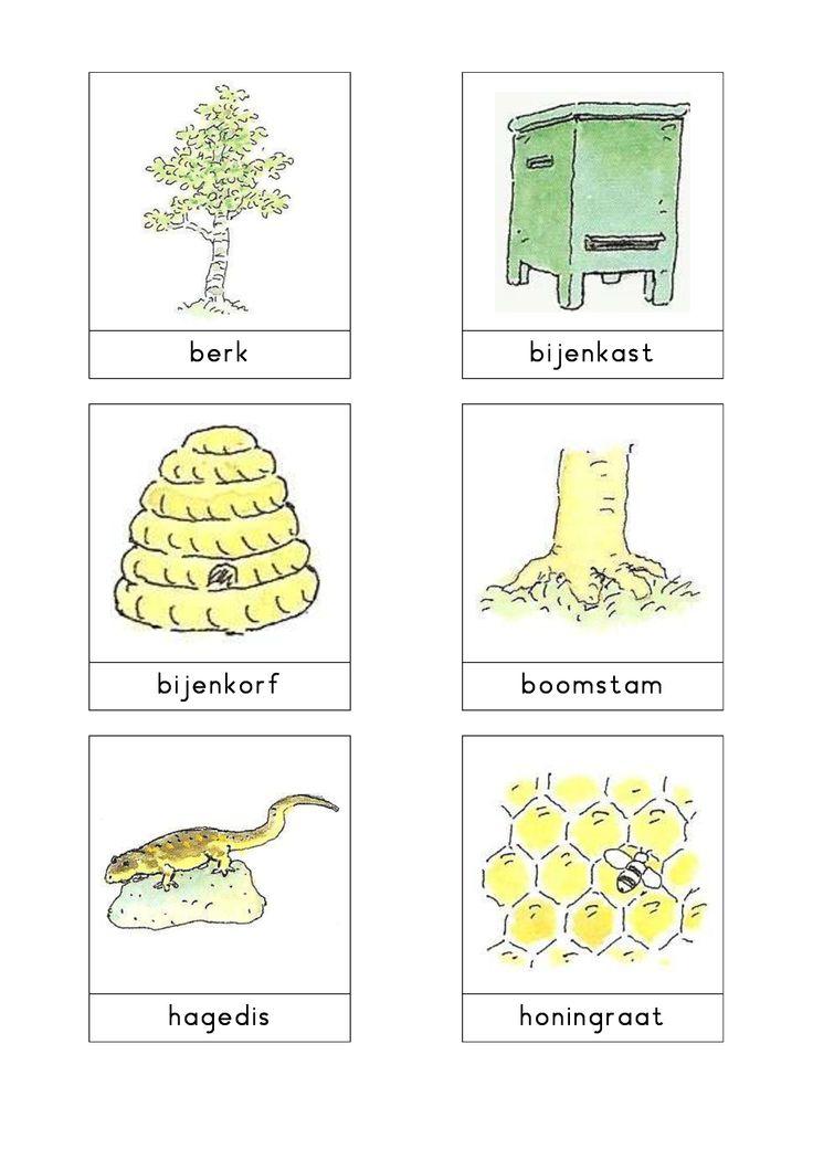 Woordkaarten Bas 'De heide' 1