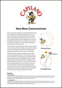 How Bees Communicate #beekeeping #honey #facts