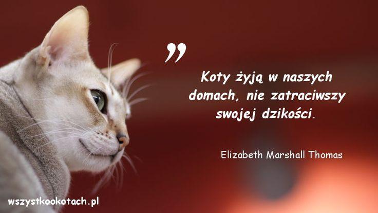 Elizabeth Marshall Thomas