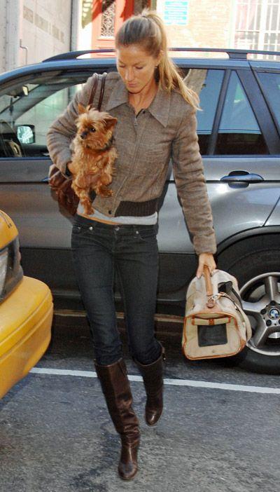Brazilian supermodel Gisele Bündchen is seen here with her little Yorkie, Vida.