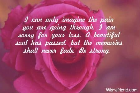 I can only imagine the pain you are going through. I am sorry for your loss. A beautiful soul has passed but the memories shall never fade ....:(