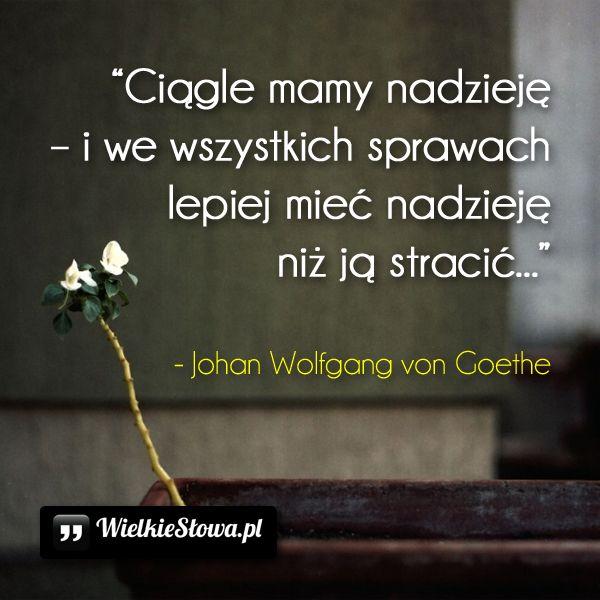 Ciągle mamy nadzieję... #Goethe, #Różne
