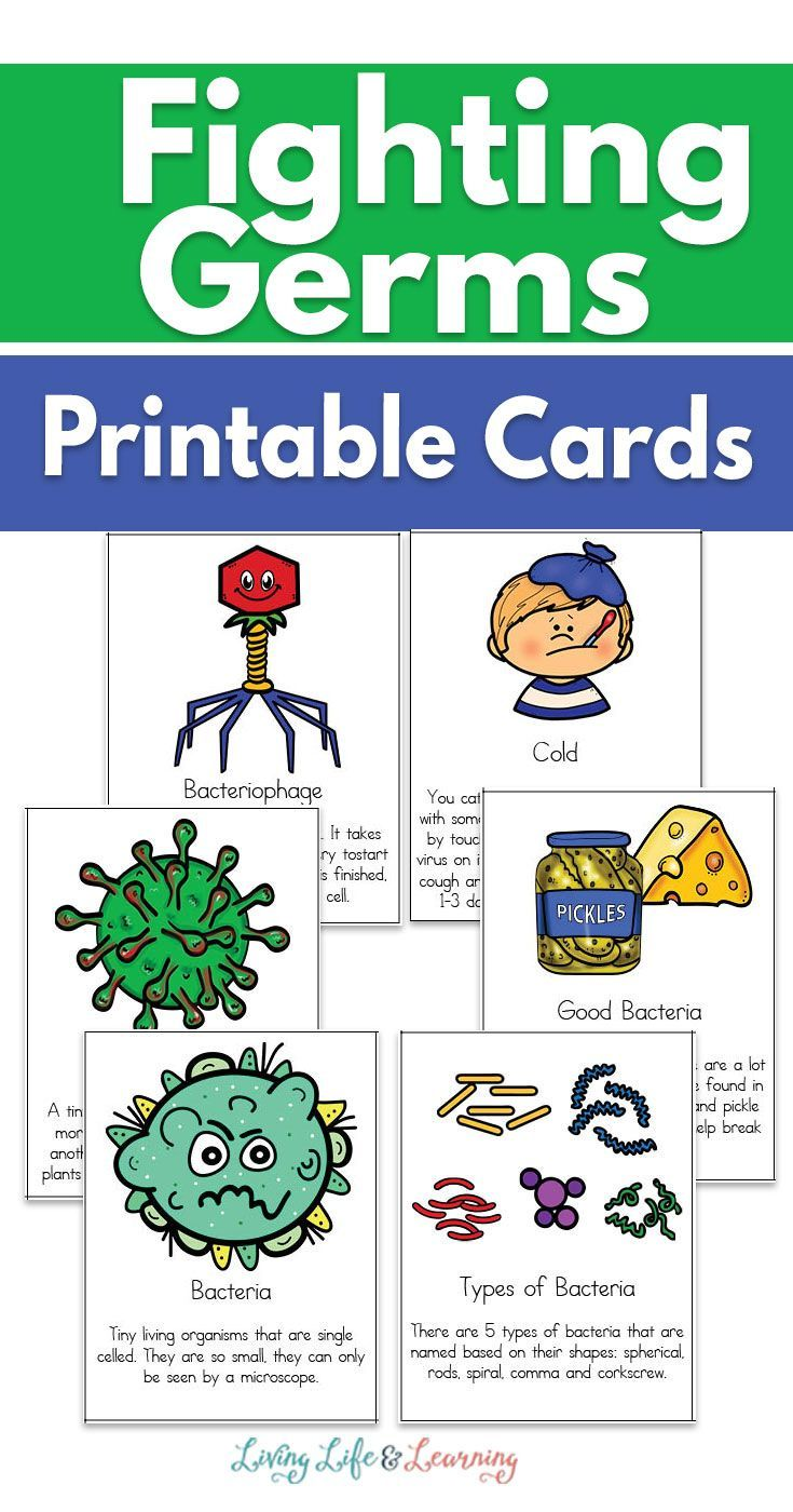 Fighting Germs Printable Cards Germs For Kids Printable Cards Germs Preschool [ 1400 x 735 Pixel ]