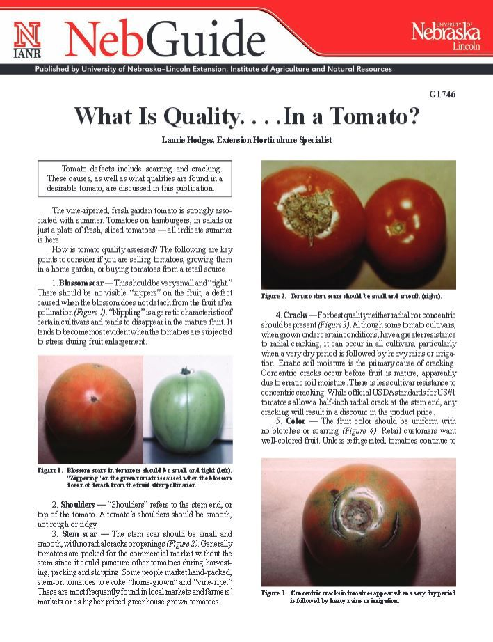 What is Quality...in a Tomato? #NebExt