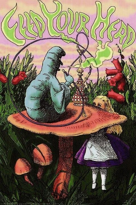 46 best Tell them a hookah smoking caterpillar..... images ...